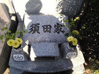 Image4181.jpg